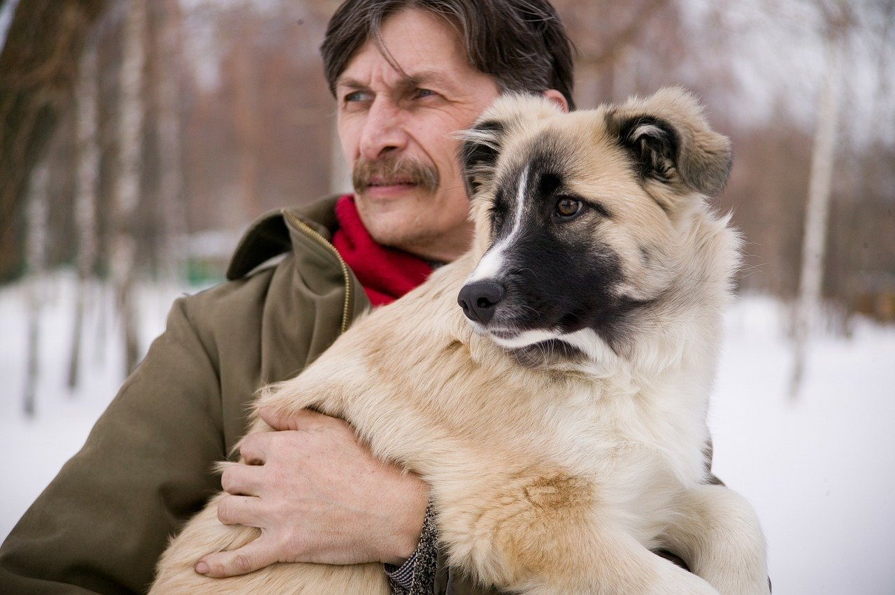 Dog Allergy: Symptoms, Causes, And Remedies Image